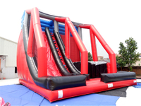 Inflatable free fall sports game